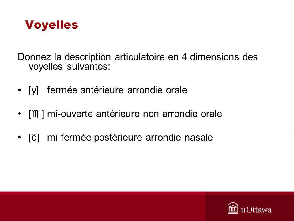 Voyelles Donnez la description articulatoire en 4 dimensions des voyelles suivantes: [y] fermée antérieure arrondie orale.